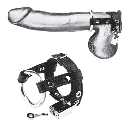 Blueline Duo Cock and Ball Lock (BLM3050)