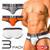 GX3 Underwear IVY LEAGUE 3-Pack College Brief (K844)