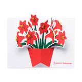 MoMA Pop-Up Holiday Cards Festive Amaryllis Set of 8 | the design gift shop
