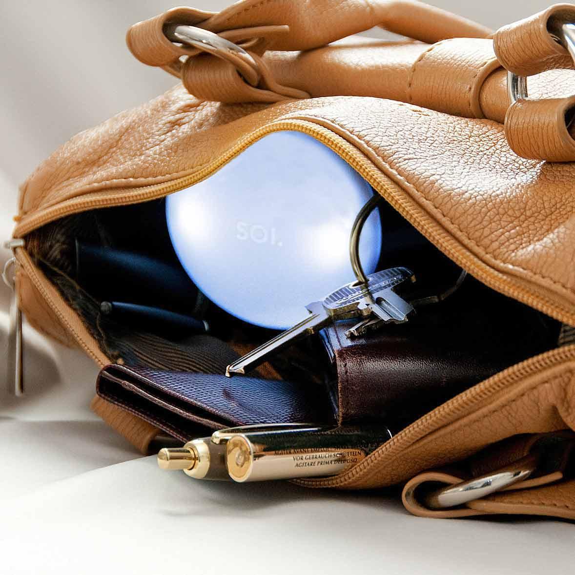 Automatic handbag light SOI   The Design Gift Shop
