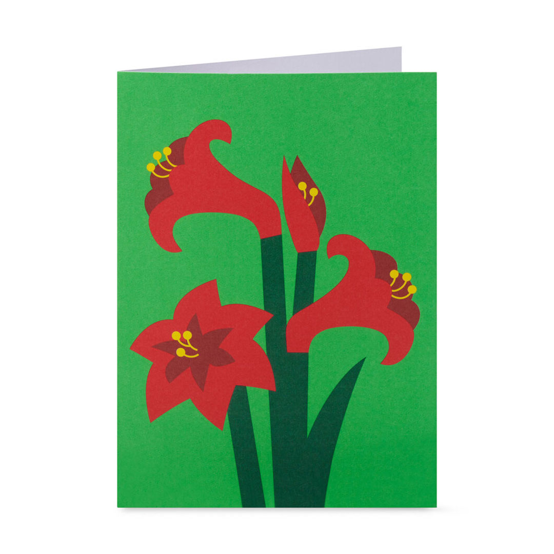 MoMA Pop-Up Holiday Cards Festive Amaryllis Set of 8 | the design gift shop