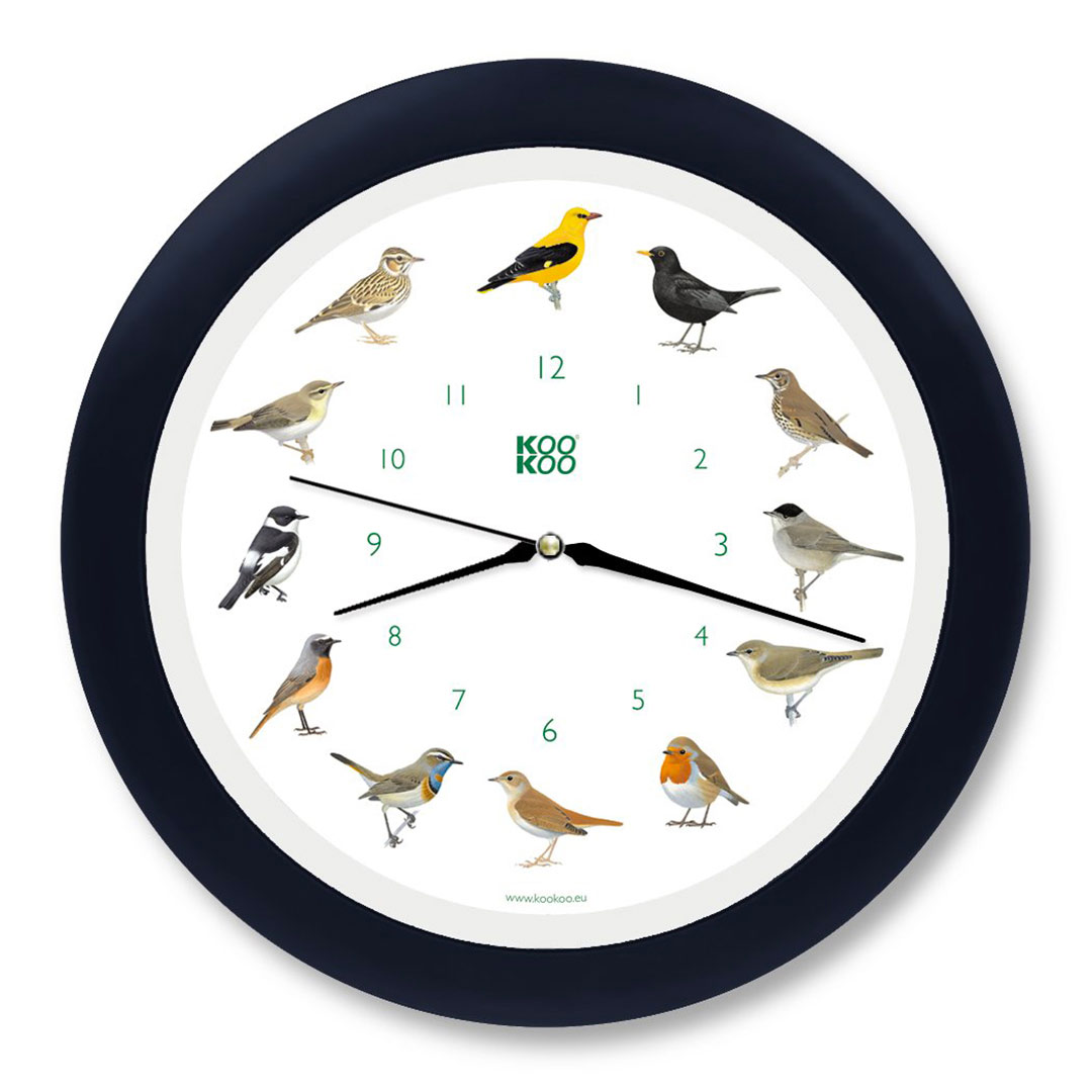 KooKoo - Singvögel - European Songbirds - Wall Clock - Blue-Black Rim | the design gift shop