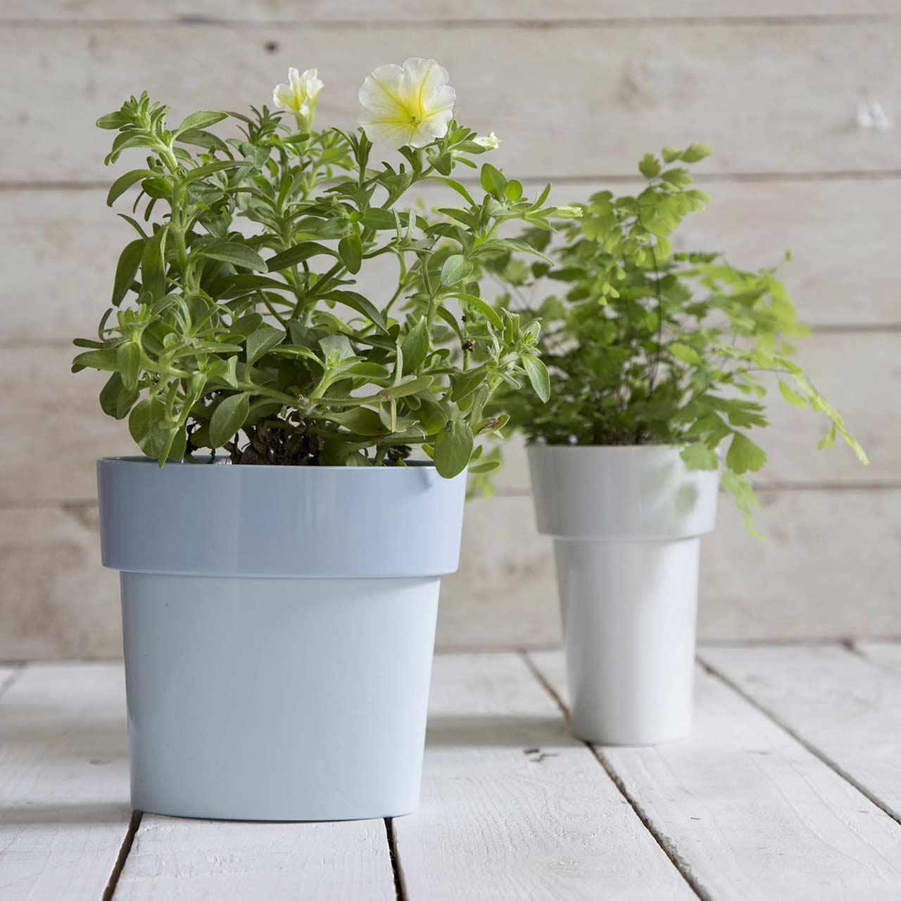 Grey Slim Flower Pot by Monkey Business | the design gift shop