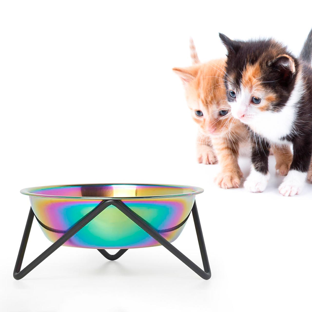 BENDO meow luxe cat dish with iridescent bowl and black stand | the design gift shop