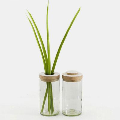 SIDE by SIDE Vase & Jar -  Glass clear, 2 part lid oak