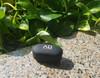 Alpha & Delta Fit True Wireless Earphone