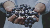 Grenache and Syrah, a happy marriage!