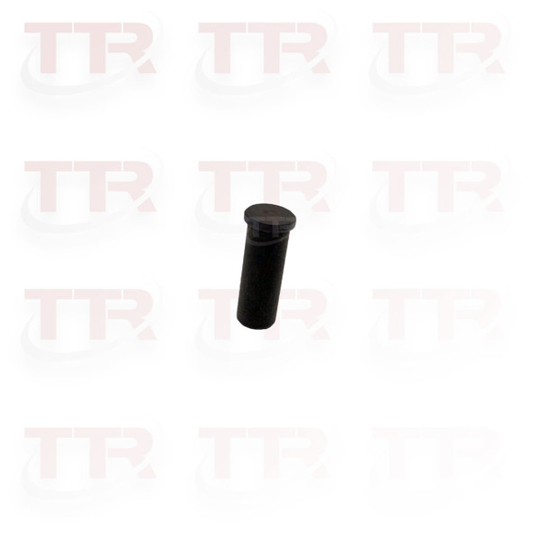 003494 Handle Pawl Pin
