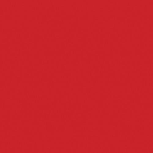 "Artistic Nail Design ""Hit Em' With A High Note"" - Coral Creme Colour Gloss LED Soak Off Gel Color, 15 mL | .5 fl oz"
