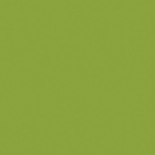 "Artistic Nail Design ""Got That Funk"" - Lime Green Crème Perfect Dip Powder 23 g | 0.8 Oz"