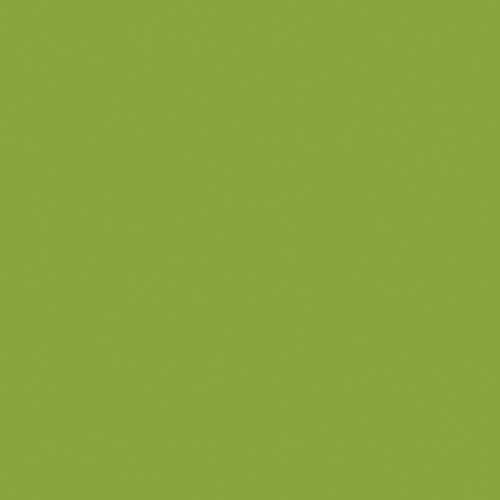 "Artistic Nail Design ""Got That Funk"" - Lime Green Creme Colour Gloss LED Soak Off Gel Color, 15 mL | .5 fl oz"