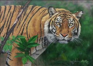 TIGER II BY RON BALABAN