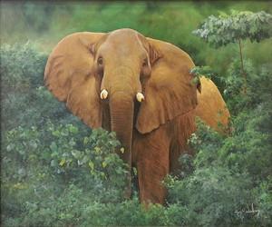 ELEPHANT BY RON BALABAN