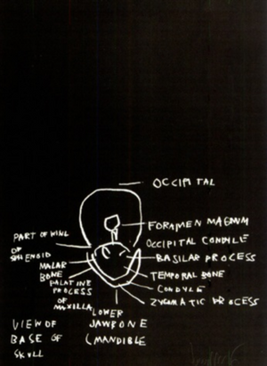 VIEW OF BASE OF SKULL (ANATOMY) BY JEAN-MICHEL BASQUIAT