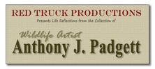 Anthony J. Padgett-Red Truck Productions