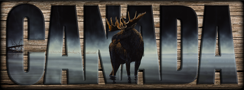 """CANADA"" Sign -  Stillwater - Moose"