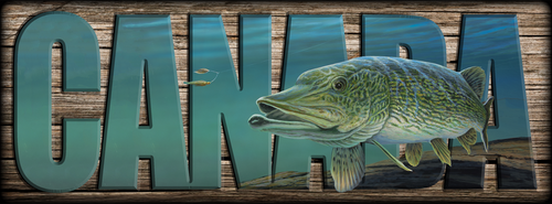 """""""CANADA"""" Sign -  Northern Pike"""