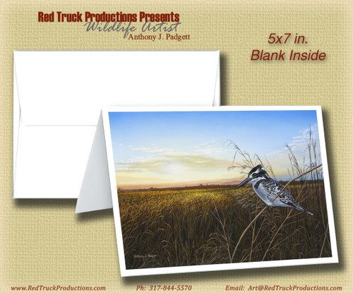 "Premium Blank Notecard- ""Return of the Kingfisher"""