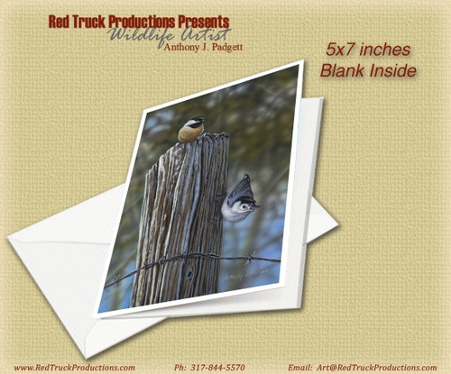 "5x7 Notecard- ""Barbed Wire Hangout"" - Songbirds"
