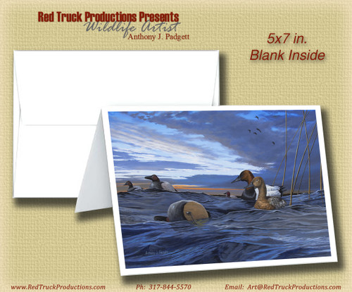 """5x7 Notecard- """"After the Storm"""""""
