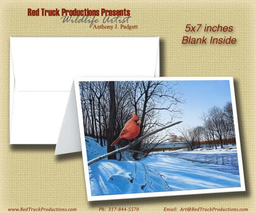"5x7 Notecard- ""Creekside Perch"""