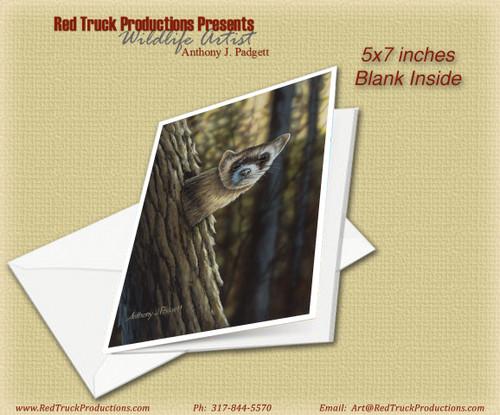 "5x7 Notecard- ""Ferret Lookout"""