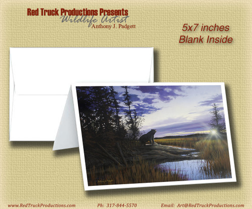 """5x7 Notecard- """"The Search"""" - Bear"""