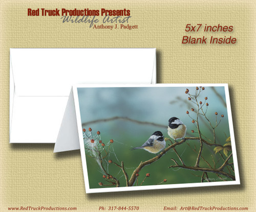 "5x7 Notecard- ""Web Chickadees"""