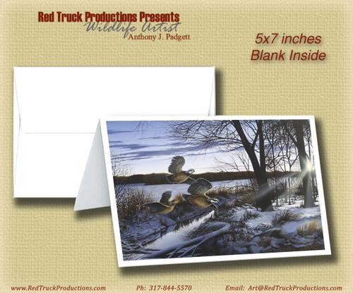"5x7 Notecard- ""Winter Flush"""