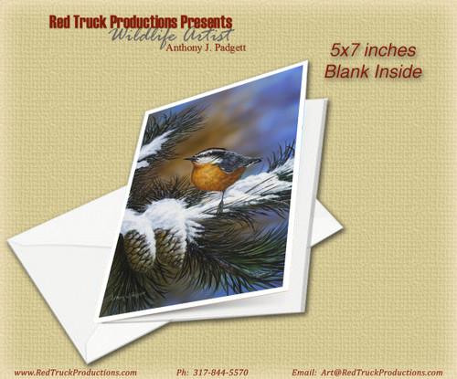 "5x7 Notecard- ""Winter Nuthatch"""
