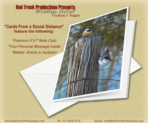"""Is this a Safe """"Social Distance""""?"""
