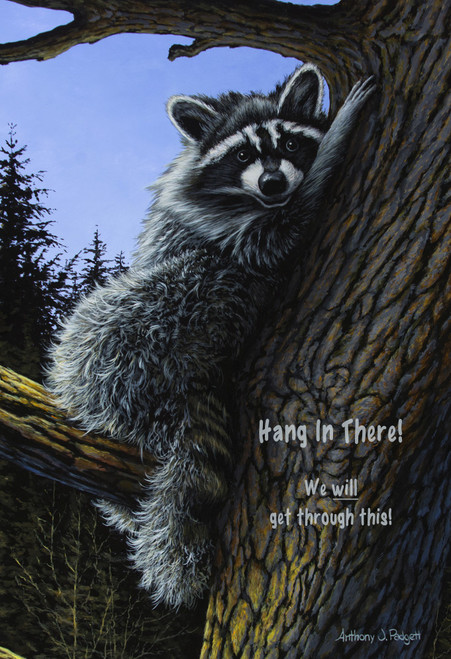 Hang In There!  We will get through this! - Raccoon