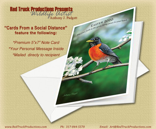 May the Faith in the Good bring Peace to Your Heart - American Robin