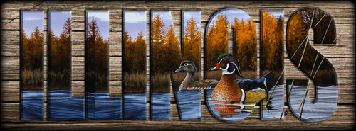 ILLINOIS - Sign - Autumn Front - Wood Ducks