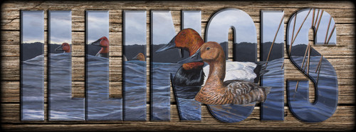 ILLINOIS - Sign - Canvasbacks
