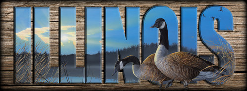 ILLINOIS - Sign - Lasting Union - Canada Goose