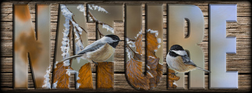NATURE Sign - Snow Chickadees