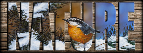 NATURE Sign - Winter Nuthatch