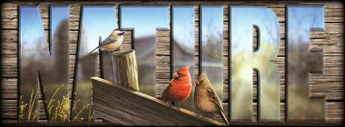 NATURE Sign - Morning Song - Cardinals with Chickadee