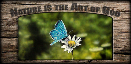 """Nature is the Art of God"" Sign - Blue Butterfly"