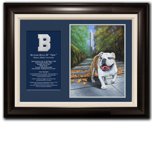 """""""Trip"""" Framed Canvas Print - Signed & Numbered - 16""""x20"""""""