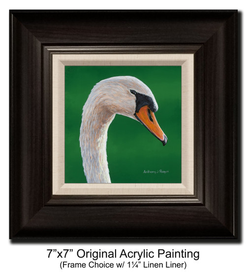 """7""""x7"""" Original Acrylic Painting - Swan Closeup"""