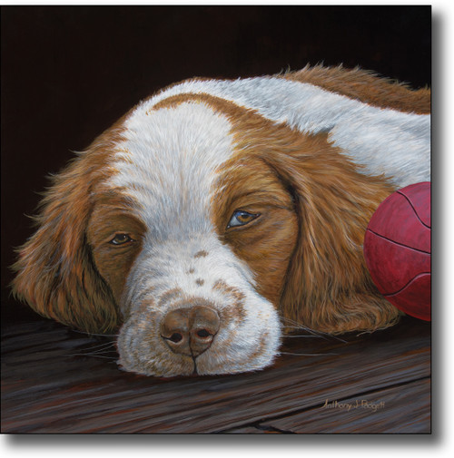 Small Canvas Print - Brittany Puppy