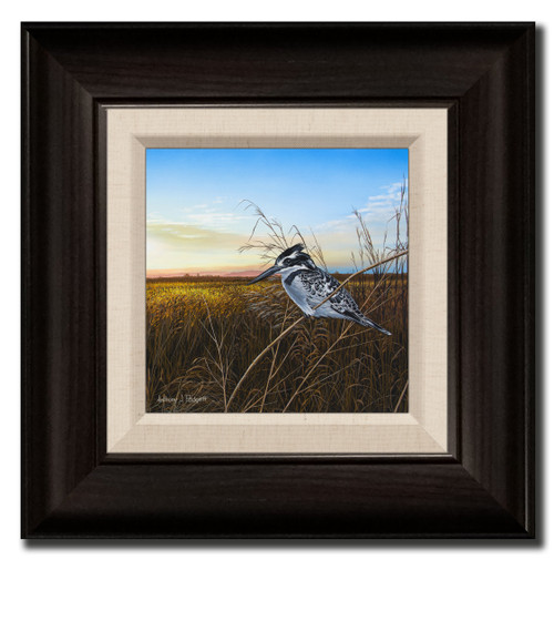 Small Canvas Print - Return of the Kingfisher