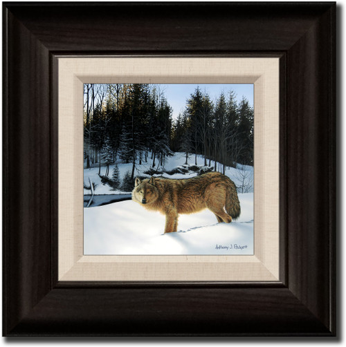 Small Canvas Print - Winter's Solitude - Wolf