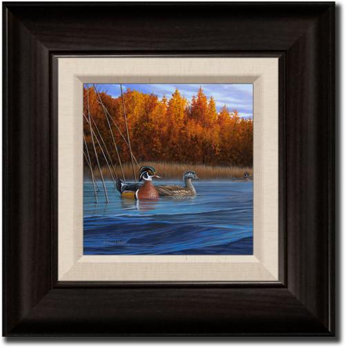 Small Canvas Print - Curious Approach - Wood Ducks
