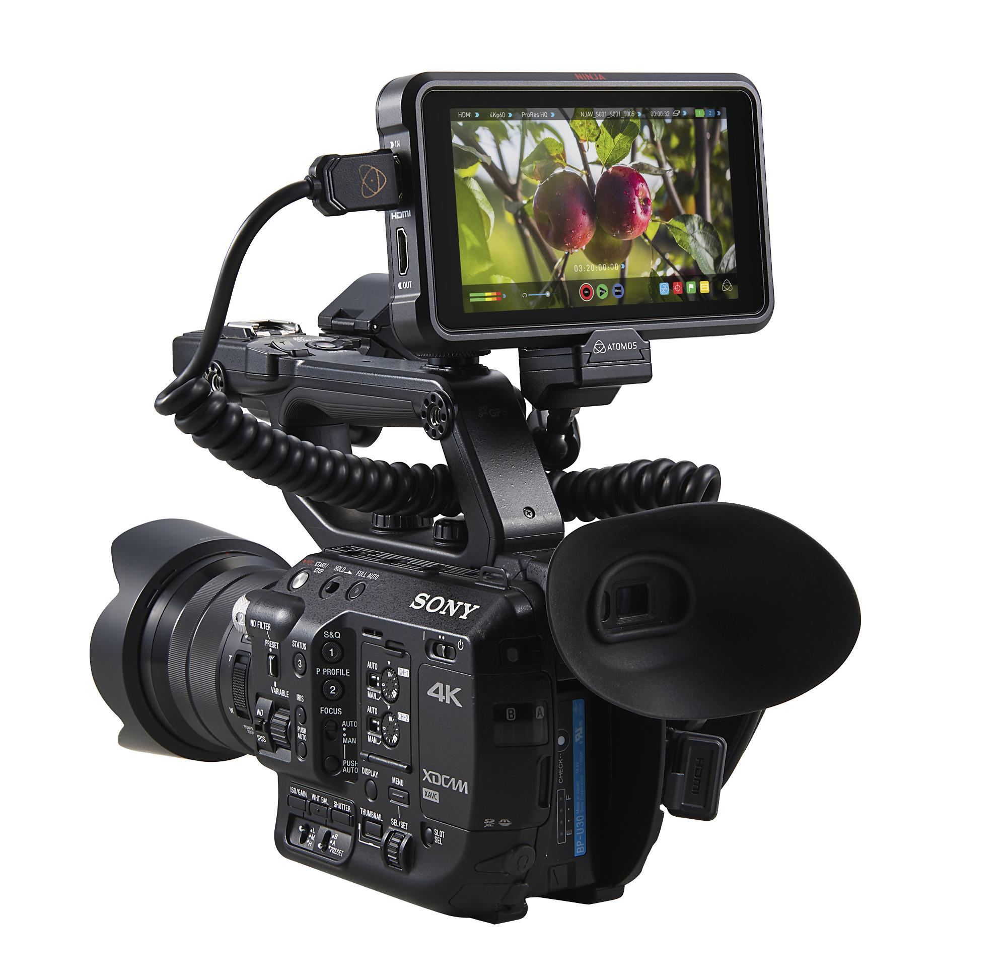 Atomos Ninja V 4Kp60 10bit HDR Daylight Viewable 1000nit Portable Monitor/Recorder - additional image 3