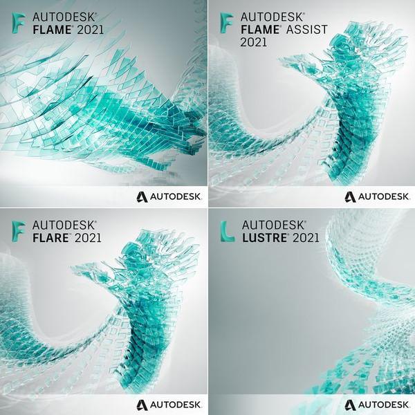 Autodesk Flame Series Professional Badge Image