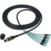 Camplex opticalCON MTP Elite Male to 12 LC Internal Cable 10ft - Image 1