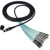 Camplex opticalCON MTP Elite Male to 12 ST Internal Cable 10ft - Image 1